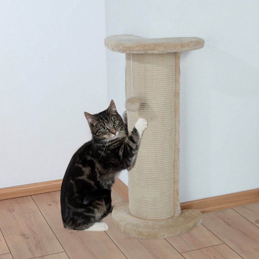 Когтеточка для кошки 1