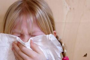 Аллергия на кошек 5