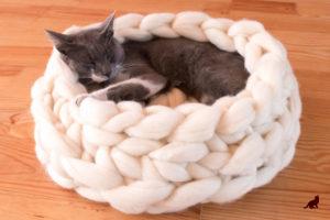 Лежанка для котенка