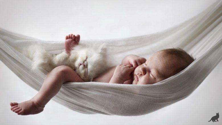 Новорожденный ребенок и кошка в доме